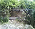 P1000104.jpg